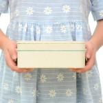 小麦秸秆长方形2层饭盒 带餐具套装便当盒(8007)